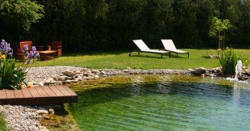 Ma piscine naturelle (ou biologique)